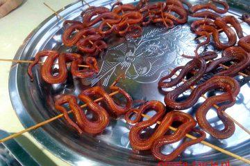 smazone-węże
